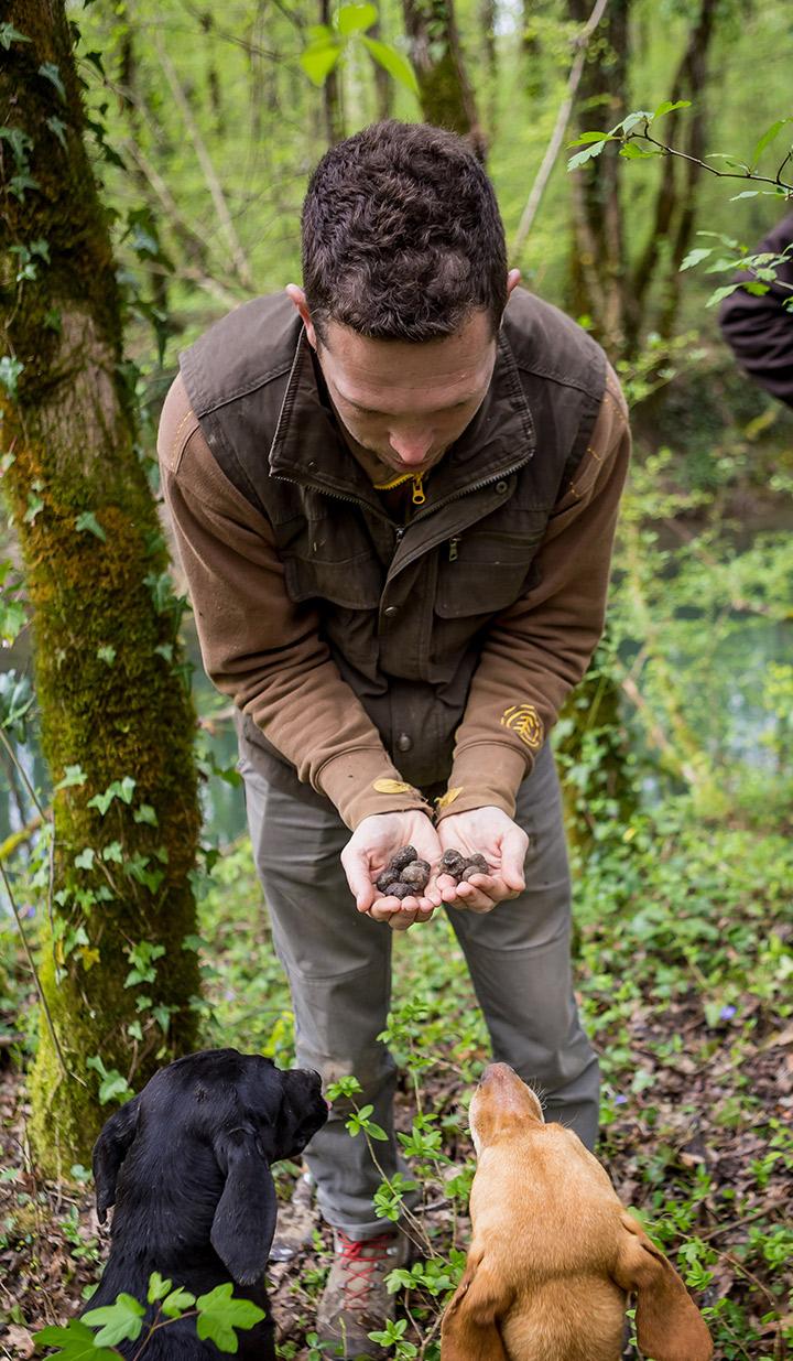 Truffle hunting Nikola Tarandek